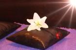 Боди массаж в четыре руки массаж пип шоу Лингама тантрический урологический спортивный ветка сакуры посетить эротический массажный салон в Саратове